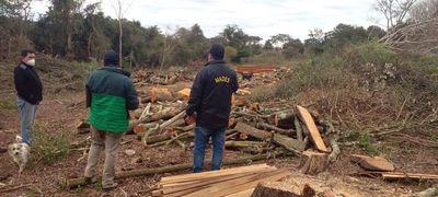 Constatan en Sapucái tala de árboles nativos que afectaría a un cauce hídrico