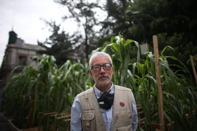 """Exposición en México reclama que se debería reconocer al maíz """"como el vino"""""""