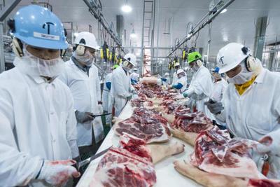 Marfrig Global Foods construirá un frigorífico en Concepción