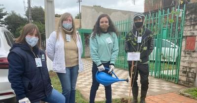 La Nación / Ofrecen plantar árboles gratis en veredas de vecinos de Gran Asunción