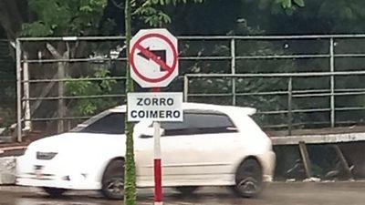 """Cartel simpático avisa que es zona de """"Zorro coimero"""""""