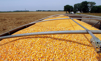 Brasil importará maíz de Estados Unidos para bajar precios