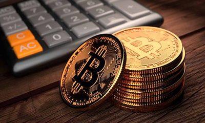 Diputado celebra apertura de empresas paraguayas al uso de monedas digitales