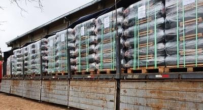 Salud recibe hoy 500 balones de oxígeno adquiridos a través de la EBY