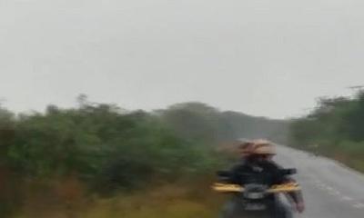 Perro fue arrastrado por un motocicleta en Carapeguá