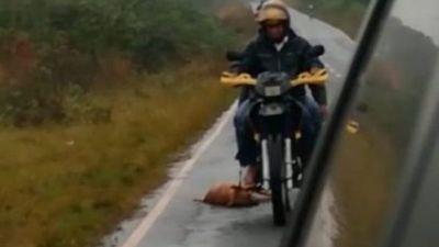 Maltrato Animal: Identifican al señor que arrastró a un perro