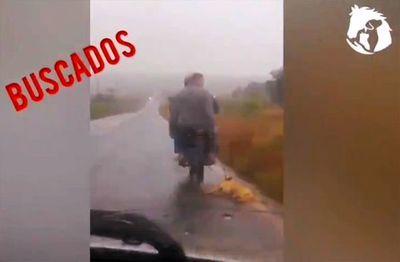 Perro arrastrado por moto: Dueño asegura que el animal ya estaba muerto