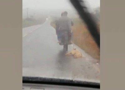 """Crónica / """"El perro fue atropellado y lo llevaba a enterrar"""""""