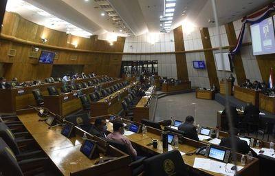Mora legislativa: Diputados tratan 13 proyectos al borde de la sanción automática