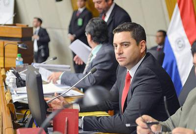 Alliana asegura que el acuerdo en el Senado tuvo la venia de Mario Abdo