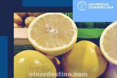 El pomelo es uno de los cítricos apreciados por sus cualidades beneficiosas para la salud, destaca Universidad Sudamericana