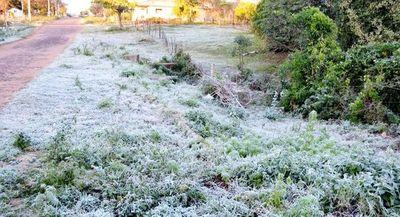 Frío polar: la próxima semana arrancará con heladas, escarcha y mínimas de 1°C