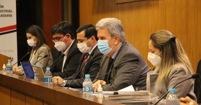La Nación / UIP apoya plan de inversión de la Ande y pide mejorar servicios