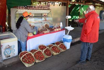"""Coordinan últimos detalles para la """"Feria de la Frutilla 2021"""" que iniciará en una semana en Areguá"""