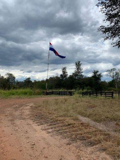 Incautan ganado de hacienda que era utilizada por una red de narcos en la frontera con Bolivia