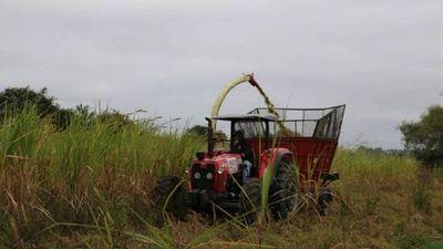 Productores de Ñeembucú reciben asistencia del Gobierno