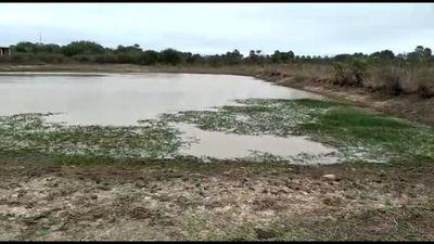 Pobladores de Fuerte Olimpo buscan agua del lodazal para beber ante escasez