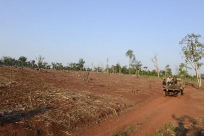 Habitantes de Caaguazú recibieron sus títulos de propiedad tras 23 años de espera