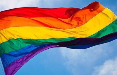 Discusión del matrimonio igualitario avanza en Chile entre gran expectación