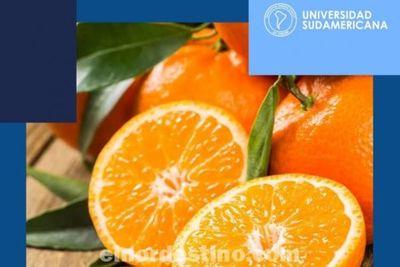 La naranja es uno de los cítricos apreciados por sus cualidades beneficiosas para la salud, destaca Universidad Sudamericana