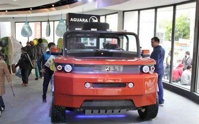 Apuntan al desarrollo de vehículos eléctricos para no contaminar el ambiente