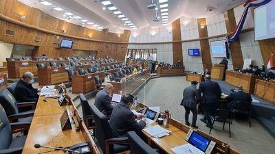 Cámara de Diputados rechaza por unanimidad proyecto sobre invasión de tierras
