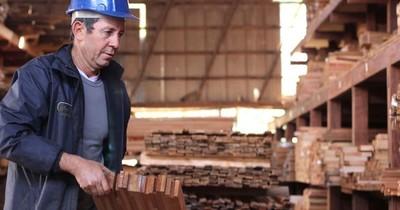 La Nación / Madereros estiman exportación récord por US$ 170 millones para este año