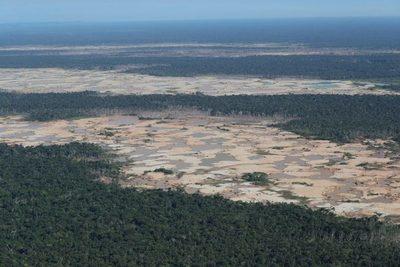 """El Gobierno de Perú ve """"altamente inviable"""" un proyecto de carretera en la Amazonía"""