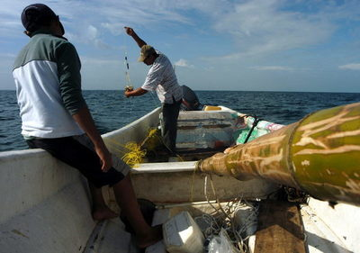 México incumple obligaciones del T-MEC en tema pesquero, según informe