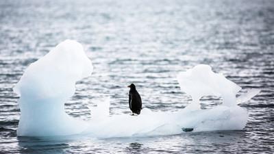 La Antártida registra una temperatura récord de 18,3 ºC