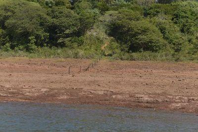 Anuncian al menos tres meses más de sequía