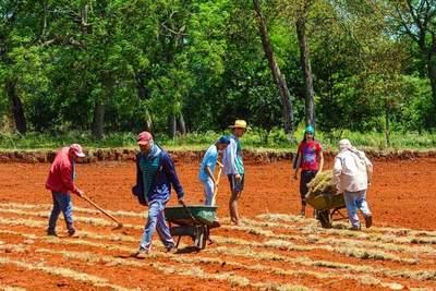 Entregarán más capital semilla a yguazuenses