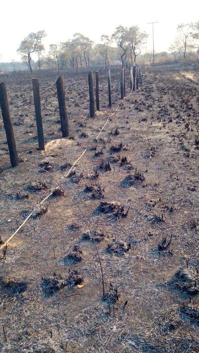 Incendio forestal causa corte de energía en Alto Paraguay