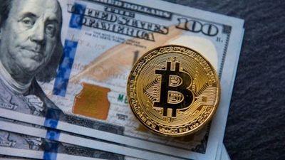 Los hermanos adolescentes acusados de cometer una de las mayores estafas con bitcoins de la historia