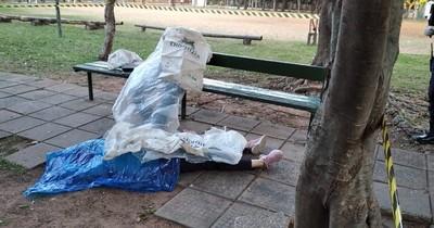 La Nación / Encuentran dos cadáveres en una plaza de Asunción