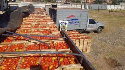 Decomisan casi 27 toneladas de tomate en Fndo. de la Mora