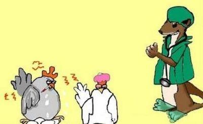 El burro, la gallina y la comadreja