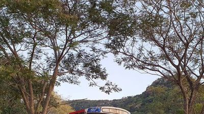 La cabaña bus que llama la atención del rollo en Paraguarí