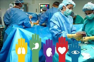 A 25 años del primer trasplante en Paraguay – Prensa 5
