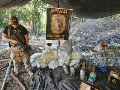 Tras operativo destruyen plantación de marihuana en Bella Vista – Dpto. Caaguazú