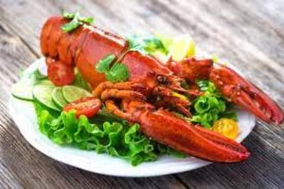 Reino Unido: Ley de Bienestar Animal plantea prohibir la cocción de langostas y otros crustáceos vivos