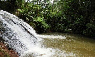 El santuario natural Yvyty Rokái cumple 13 años conservando la biodiversidad