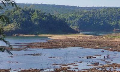 Bajante del río Paraná deja a isla Parejha fuera del agua