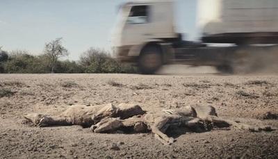 """""""Apenas el sol"""", la película paraguaya premiada en Turquía"""