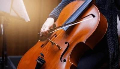 ¡Fuera de lo común! Joven danés imparte conciertos de música clásica para vacas