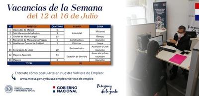 Unos 90 puestos laborales están disponibles en la Vidriera de Empleo