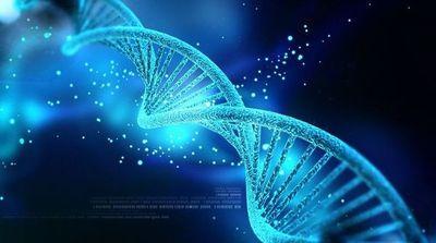 OMS emite primeras recomendaciones sobre la manipulación del genoma humano