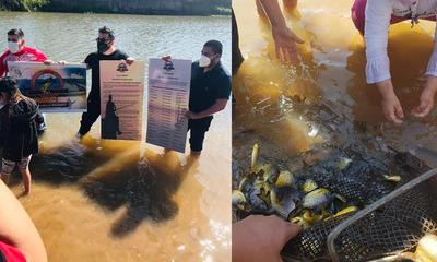 Siembran ejemplares de peces autóctonos en río Tebicuary
