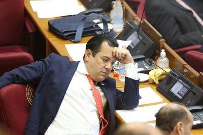 Jugarreta de Friedmann para archivar su pérdida de investidura: Senado sesiona esta tarde