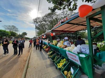 Habilitan casillas en la Plaza de los Héroes de Coronel Oviedo – Prensa 5